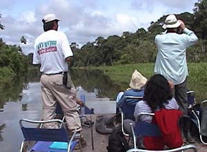 Wildlife watching in the Amazon