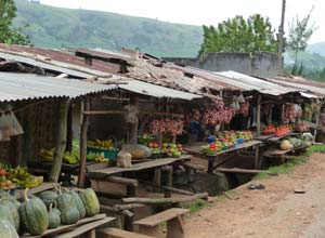 Roadside stalls on Uganda road