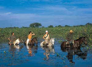 Horse riding at Araras Lodge, Brazil