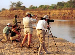 Shenton safaris are excellent for photographers