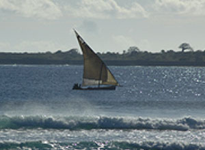 Dhow in the Indian Ocean