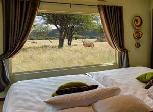 View from Okonjima Plains Camp bedroom