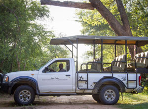 Go on a game drive in Hwange National Park